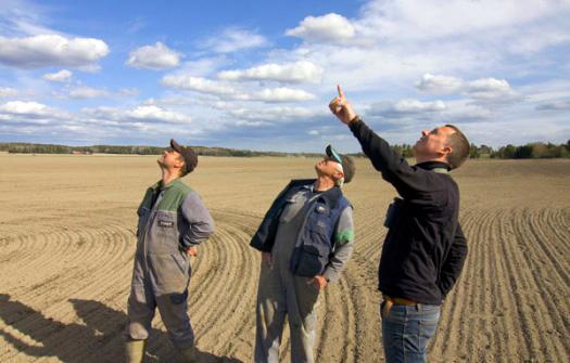 Rädda Sånglärkan finns för att ta vara på lantbrukarnas naturvårdsintresse.