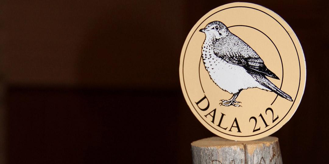 Dalarnas Artrally 2019 Dalarnas Ornitologiska Förening