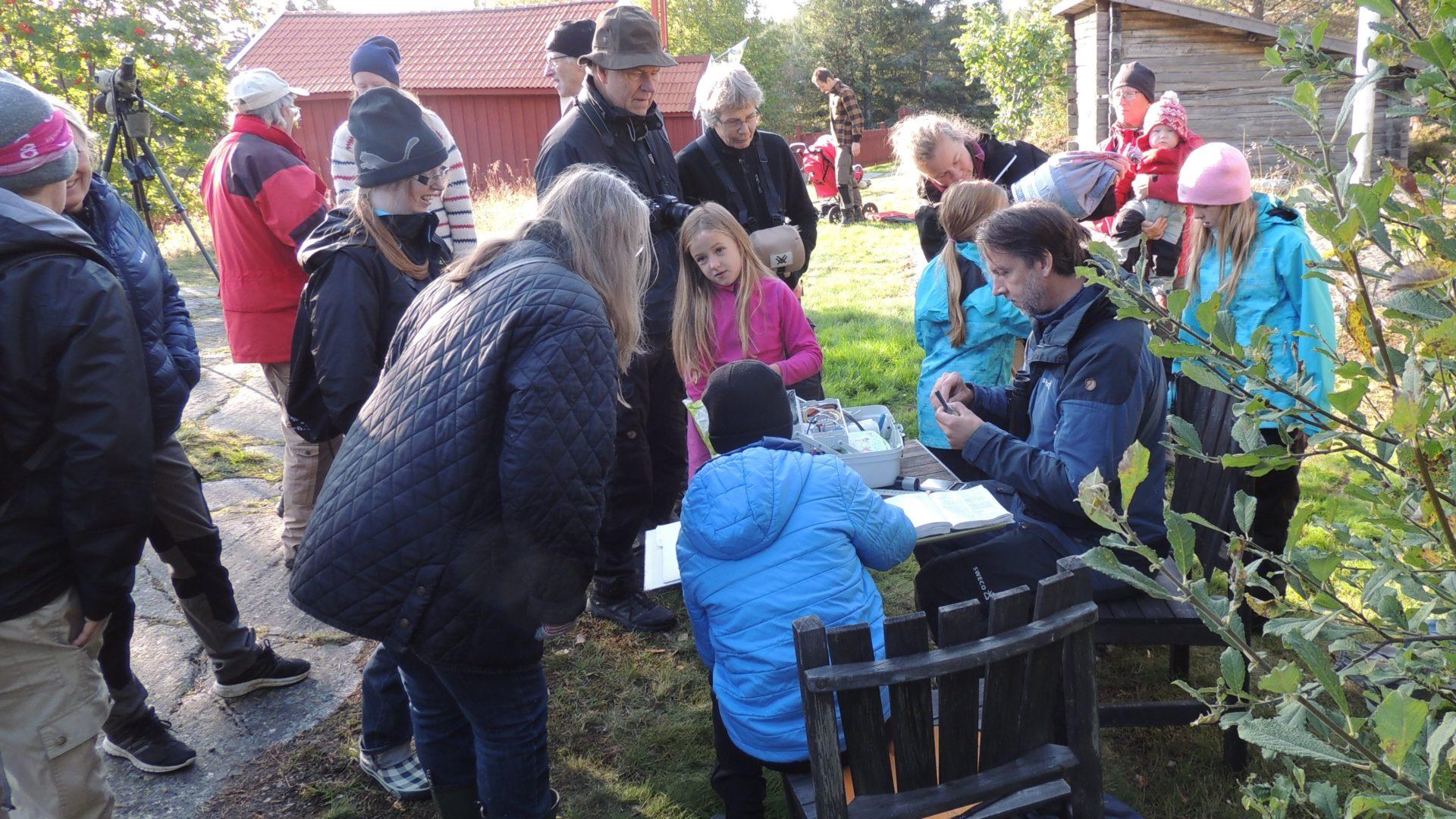 Full fart vid ringmärkning i Skeppsmalen. Foto. Thomas Birkö.
