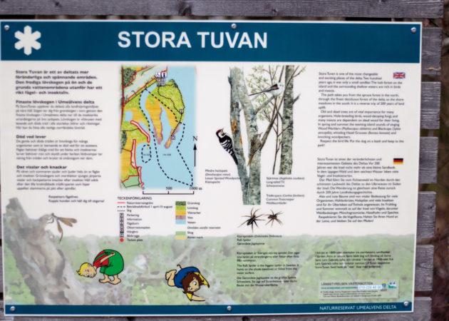 Stora Tuvan